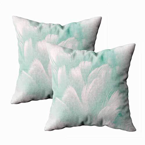 Juego de 2 fundas de almohada para exteriores, 45,7 x 45,7 cm, con plumas, color azul pálido a huevo de Robin fondo de color para decoración del hogar, fundas de almohada con cremallera para sofá