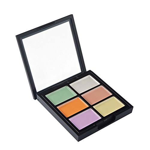 frcolor 6 couleurs correcteur crème Kit de Contour Palette en poudre cosmétique Bronzer surligneur poussière Face Kit protecteur de yeux foncé cercle (Z01 – 1)