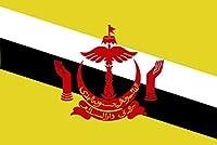 太田旗店 ブルネイ 国旗 120×180㎝ 地球にやさしい外国旗