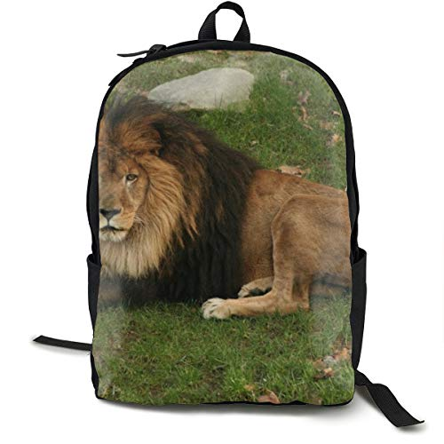 Mochilas universitarias mochila escolar portátil mochila de viaje, senderismo, camping, pasto de león, melena de gato grande Predator