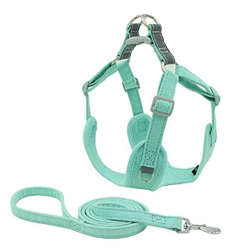 BONAWEN Hundegeschirr-Set für Welpen, leicht, verstellbar, kein Ziehen, strapazierfähig, Grün, 2 Stück