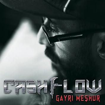Gayri Meshur