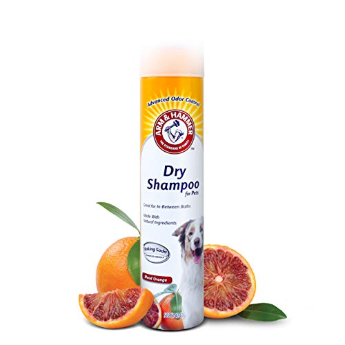 Arm & Hammer Dry Shampoo for Dogs | Dry Dog Shampoo Aerosol Spray Cleans & Deodorizes, Blood Orange Scent