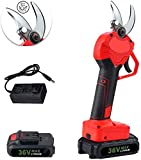 SEEROOTOYS Cordless Electric Pruning Shears, Electric Scissors with 2PCS Backup Rechargeable 2Ah Lithium Battery Powered Tree Branch Pruner,30MM (1.2 Inch) Cutting Diameter,6-7 Working Hours