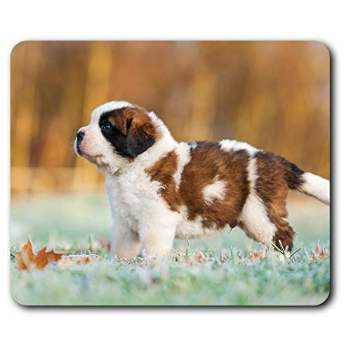 Comfortable Mouse Mat - Fluffy St Bernard Puppy Dog Pet 23.5 x 19.6 cm (9.3 x 7.7 inches) for Computer & Laptop, Office, Gift, Non-Slip Base - RM24134