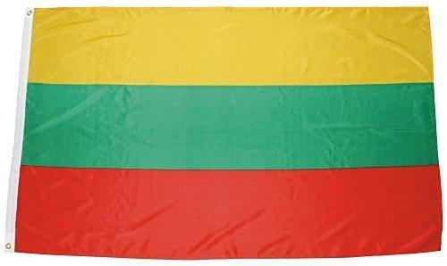 MFH Fahne 90x150 cm Länderflagge WM EM Hissflagge Nationalfahne Deutschlandfahne (Litauen)