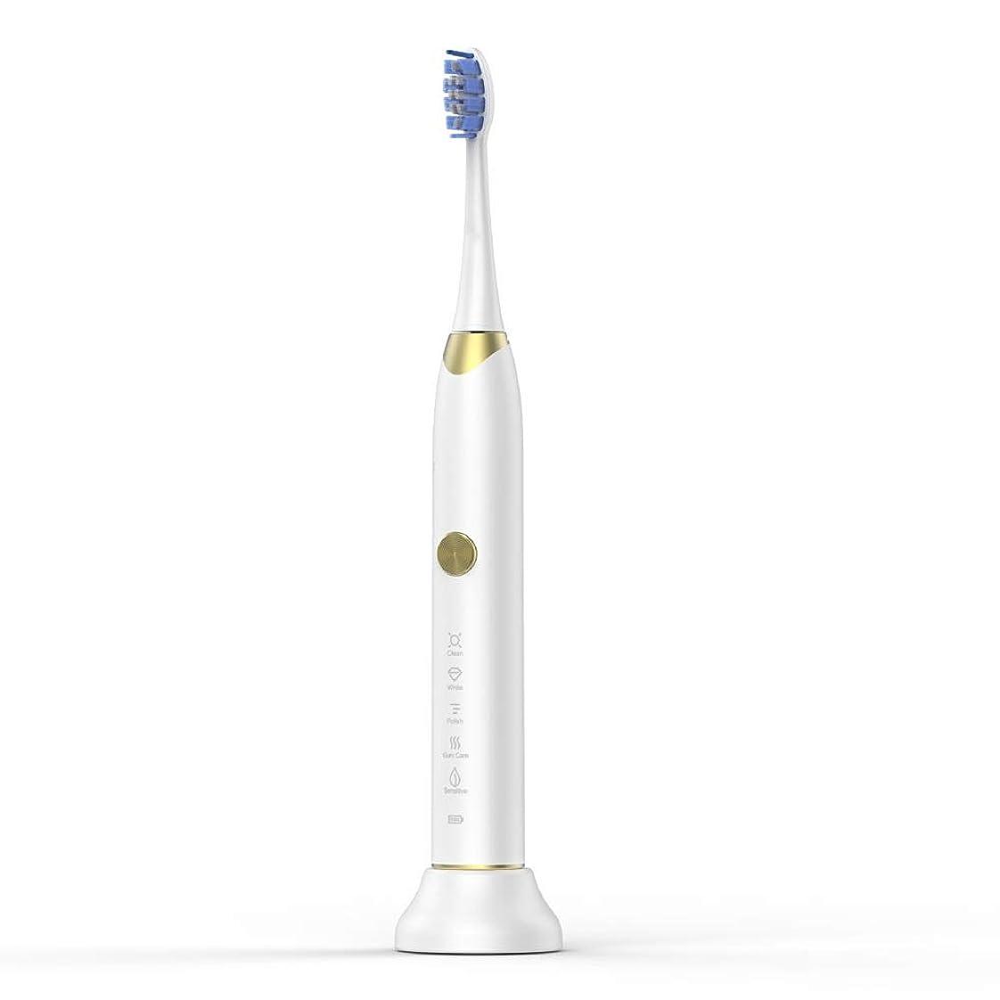本体タフ販売計画電動歯ブラシ USB充電ベースホルダー付きソフト歯ブラシ ケアー プロテクトクリーン (色 : 白, サイズ : Free size)