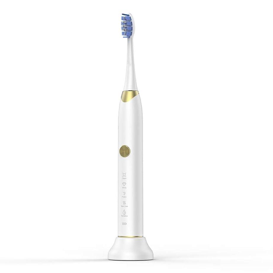 切り下げ頂点平均家庭用電動歯ブラシ USB充電ベースホルダー付きソフト歯ブラシ 男性用女性子供大人 (色 : 白, サイズ : Free size)