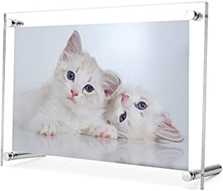 Exquisite Acrylic Photo Frame with stand. Free Standing/Tabletop Display - Modern, Stylish & Transparent. Organize and Pro...