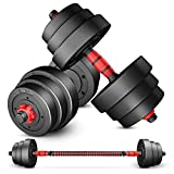 H&N Fashion Adjustable 44LB Dumbbell Weight Set Barbell Lifting 4 Spinlock Collars & 2 Connector Options for Gym Home Bodybuilding Training (Dumbbell)
