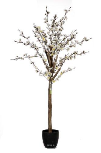 Artificielles - Cerisier Prunus du Japon Artificiel avec Fleurs Tronc Naturel 150 cm Creme - Choisissez Votre Couleur: 150 cm Blanc