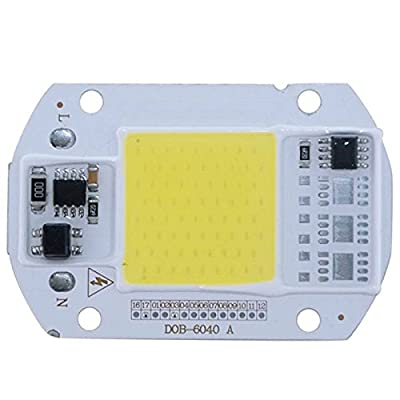 Lanlan 220V LED Floodlight 20W/30W/50W White/Warm Light COB Chip Integrated Smart IC Driver Lamp White Light 50W