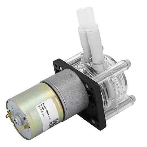 Micro Peristáltico Bomba, Pelota Soporte 12v/24v (Opcional) 0-400ml/minuto con Ingeniería Plástica