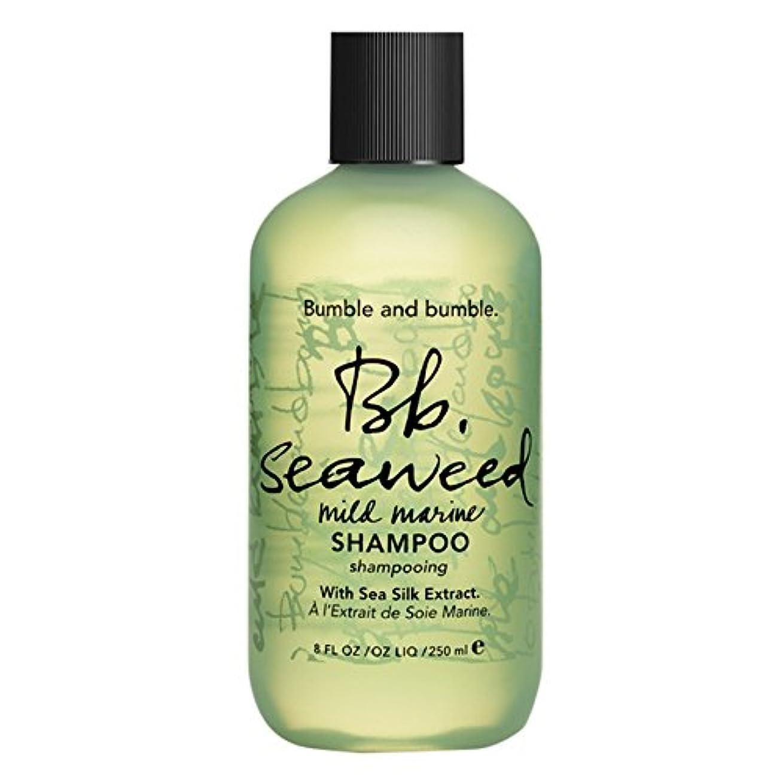 ミケランジェロ漫画重くするバンブルアンドバンブル海藻シャンプー (Bumble and bumble) (x2) - Bumble and bumble Seaweed Shampoo (Pack of 2) [並行輸入品]