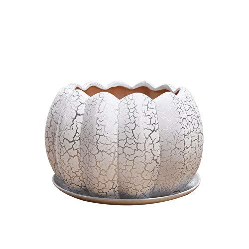 Moderna maceta interior de la grieta creativa con la bandeja, la cama de flores en maceta en maceta, la parte inferior de la olla está diseñada con una bandeja, macetas de cerámica para plantas maceta