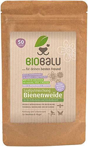 Biobalu Öko Blumenmischung für Bienenwiese – für bis zu 50 qm, mehrjährig und winterhart, viele Wildblumen und -kräuter, ideal für Halbschatten- und Schattenbereich, 50 g