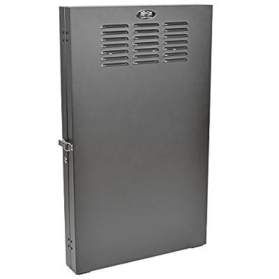 Tripp Lite Vertical Wall-Mount Rack Enclosure Cabinet, Low-Profile, Switch Depth