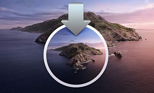 macOS OS X 10.15 Catalina - Bootfähiger Recovery USB