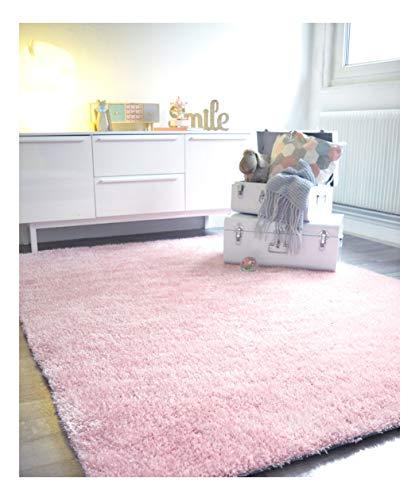 Decoweb Tapis Sunny Shaggy Poils Longs Rose pâle (120 x 170 cm)