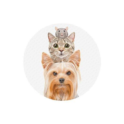 Lustiges Tierporträt von Hund Katze und Ratte Runde rutschfestes Gummi Komfortable Computer-Mauspad-Gaming-Mousepad-Matte für Home-Office-Reisen
