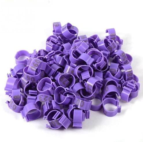 PGATU Anneaux de Clip de Pied en Plastique, bagues de Jambe, appareils d'oiseaux, Fournitures de Ferme de Poulet de volaille(Purple)