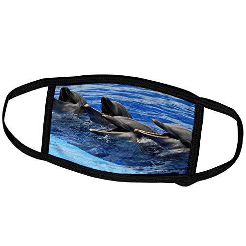 Promini Monatsmaske - Kike Calvo Delfine - Vier Delfine auf Wasseroberfläche im Ozeanographischen Aquarium in Valencia, Spanien - Staubmaske Outdoor Schutzmaske