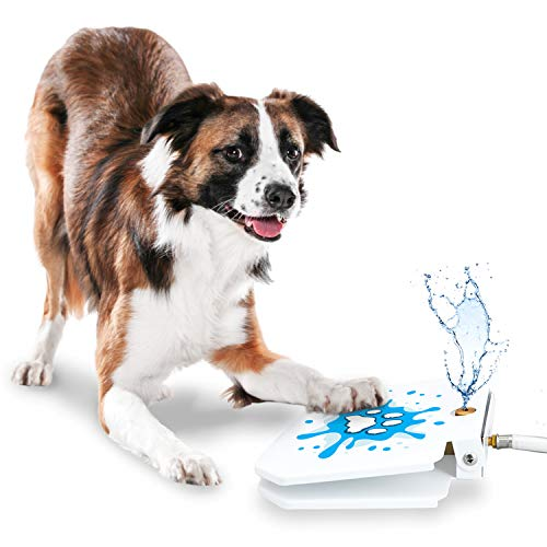 GoodBoy Water Fountain for Dogs – Interactive Paw Pedal Design Stimulates Pets and Keeps Them Cool – New Durable Leak-Proof Dispenser – Keeps Furry Friends Healthy Happy and Hydrated!