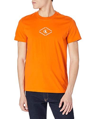 Calvin Klein Jeans Herren CK MONOTRIANGLE Tee T-Shirt, Rost-Orange, XL