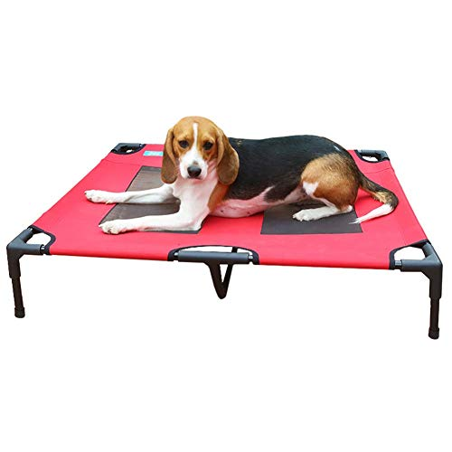 Beste Hond Kinderbedje | Verhoogd Huisdier Bed | Mesh, Verhoogd Huisdier Kinderbedje In of Uit Verlaagde Platform Stijl voor Koeling, Kauwen Proof Mesh Cool Off the Ground Floor, S