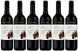 Yalumba 2017/2019 Y Series Shiraz South Australia Red Wine