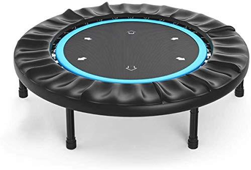 ZHENG Exercise Trampoline Indoor Trampoline Fitness Trampoline For Adults Or Kids Trampoline For Gym/Home 40 Inch /45 Inch Mini Exercise Trampoline (Color : Blue, Size : 45 inch)
