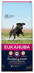 Tailored junior dog food with fresh chicken for large breed dogs in a resealable bag Improved formula for the healthy digestion and optimal body condition of your dog A distinct hexagon kibble shape which improves palatability Contains DentaDefense t...