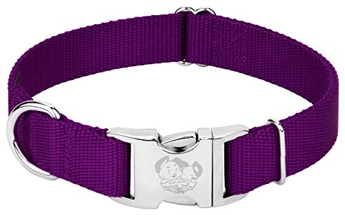 Country Brook Design - Vibrant 26 Color Selection - Premium Nylon Dog Collar with Metal Buckle (Medium, 3/4 Inch, Purple)
