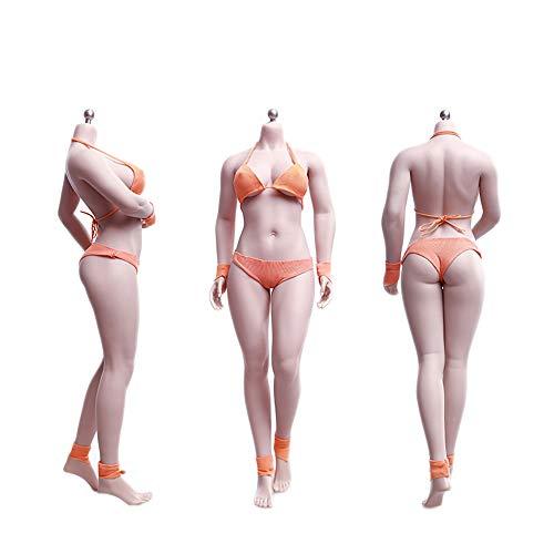 TBLeague 1/6スケール フィギュア 最新豊満 バクソム 巨乳 女性 素体 ボディ 少し肉付き グラビアモデル素体セット 最新アジアン 交換足 交換手 PHMB2019-S28A 白肌色