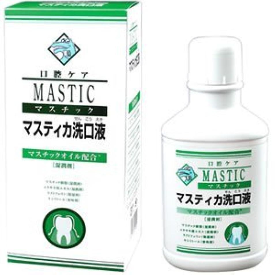 書く上げる助言マスチック マスティカ 洗口液 480mL