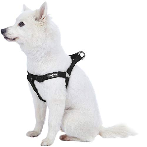 Blueberry Pet Essentials 21 Colors Step-in Classic Dog Harness, Chest Girth 20