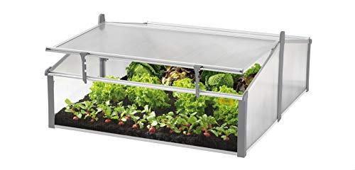 Juwel Komfort Doppel-Frühbeet Easy-Fix 120/100 (Pflanzenbeet aus wärmeisolierenden Hohlkammerplatten, Gewächshaus zur Aufzucht von Pflanzen, mit Fenster-Fixierung, Größe 120x100 cm) 20221