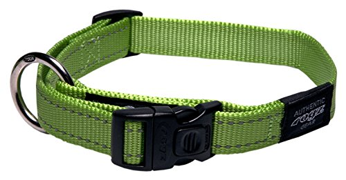 Reflective Dog Collar for Large Dogs, Adjustable from 13-22 inches, Green