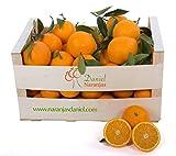 Naranjas Valencianas de Zumo, Del Arbol a Tu Mesa (10 kg)