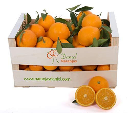 Naranjas Valencianas de Zumo, Del Arbol a Tu Mesa (12 kg)
