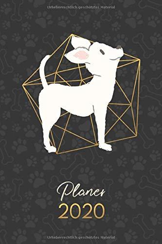 Planer 2020: Terminkalender Wochenplaner Monatsplaner  - Chihuahua-Creme (12 Monate Jan bis Dez - Kalender - Hund, Band 27)