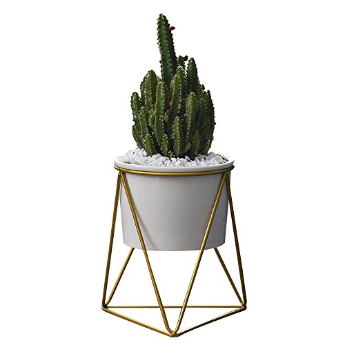 Indoor Pots 6 inch Modern Plants White Ceramic Round Bowl with Metal Stand (White + Gold)