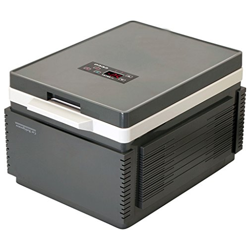 Voiture de boîte de chauffage de maison de réfrigérateur de la voiture 12L et réfrigération à double usage de maison (Couleur : Gray)