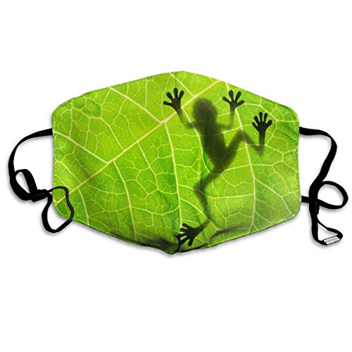 Frosch auf Blatt Frühlingsgrün Männer Frauen Atmungsaktiv Komfortable Gesichtsschutzhülle mit Gummiband für die persönliche Gesundheit Verschiedene Verwendung