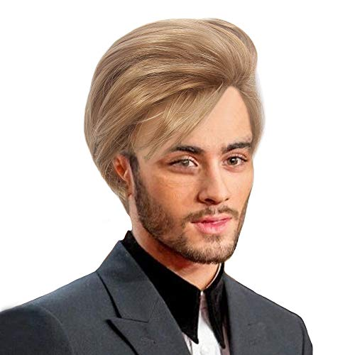 H&Bwig Men Wigs Short Brown Wig Male Guy Layered Middle Part Hair Daily Costume Cosplay Anime Party (#19)