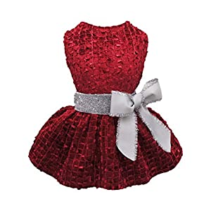 Fitwarm Embroidery Dog Dresses Pet Clothes Prom Puppy Dress Cat Birthday Doggie Party Gown Large