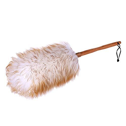 XYJNN Plumero Coche|Atrapapolvo| | Las tareas del hogar Limpieza de Ceniza de Limpieza | Herramientas de Limpieza de Coche | Suaves y delicadas no es fácil de Pelo Shed