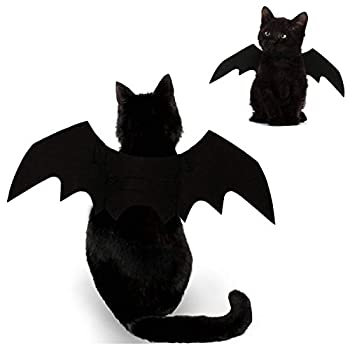 Best pickle costume for cat Reviews