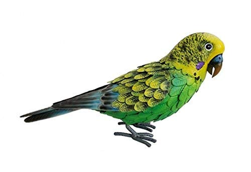Primus Perruche en métal vert de luxe.