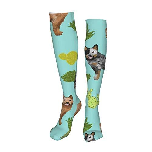 Vilico Casual rodilla medias altas sobre la rodilla calcetines largos calcetines de ganado australiano perro azul y rojo talones cactus azul tinte unisex deportes para hombres mujeres